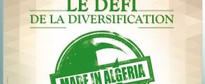 Le défi de la diversification #N3 Djazair Magazine