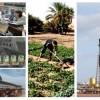 Le PIB de l'Algérie a augmenté de 3,6% début 2016