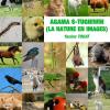AGAMA S-TUGNIWIN (La nature en images), un livre pour enfants de Yacine Touat