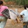 Algérie-Espagne: promouvoir la coopération bilatérale dans le domaine social