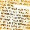 Lancement d'une formation d'initiation à la langue amazighe pour les fonctionnaires du SNU