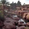 Tiout (Nâama), une oasis en quête de valorisation