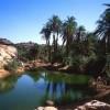Tourisme/Promotion: faire de l'Algérie une destination touristique d'excellence