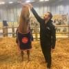 Hassen Bouchakour, rencontre singulière avec un être et un cheval hors du commun.