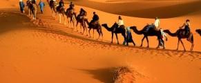 Tourisme saharien : la saison 2018-2019 s'annonce «satisfaisante»